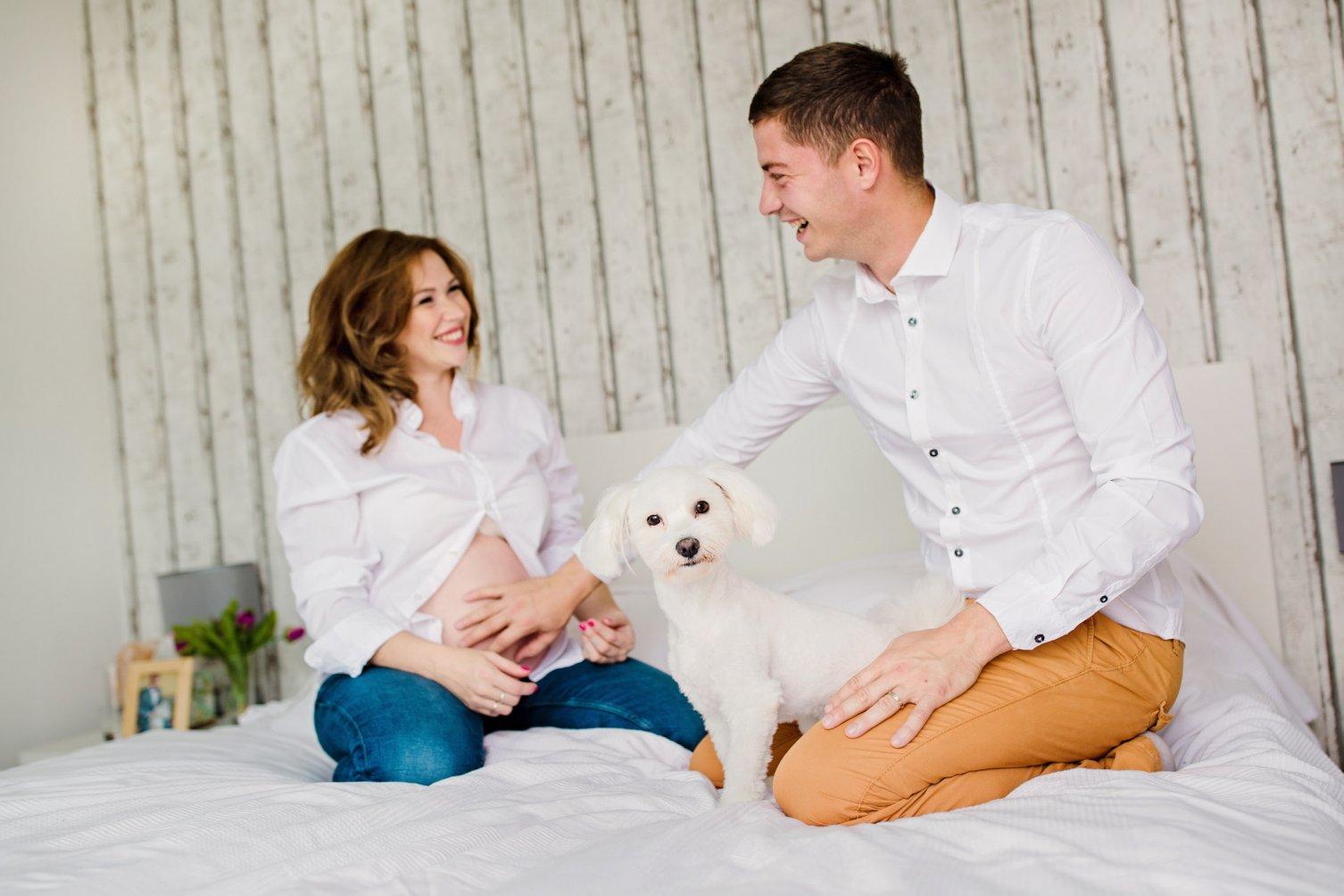 tehotenstvo, láska, dieťa, pes, posteľ, domov